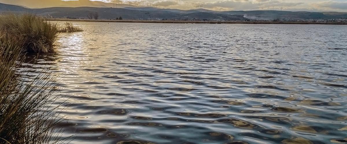 Padul lagoon